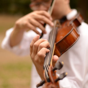 ヴァイオリンを演奏する・いちろーたの左手と右手