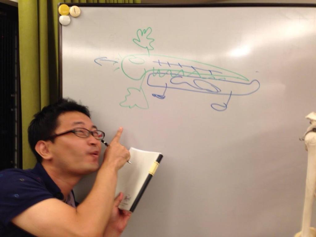 イラスト「脊椎動物モデル」バジル画伯